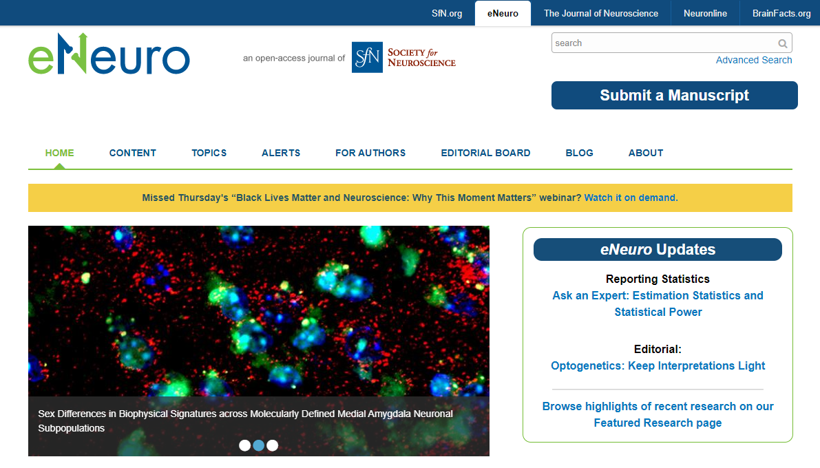 eNeuro Publication ScreenShot