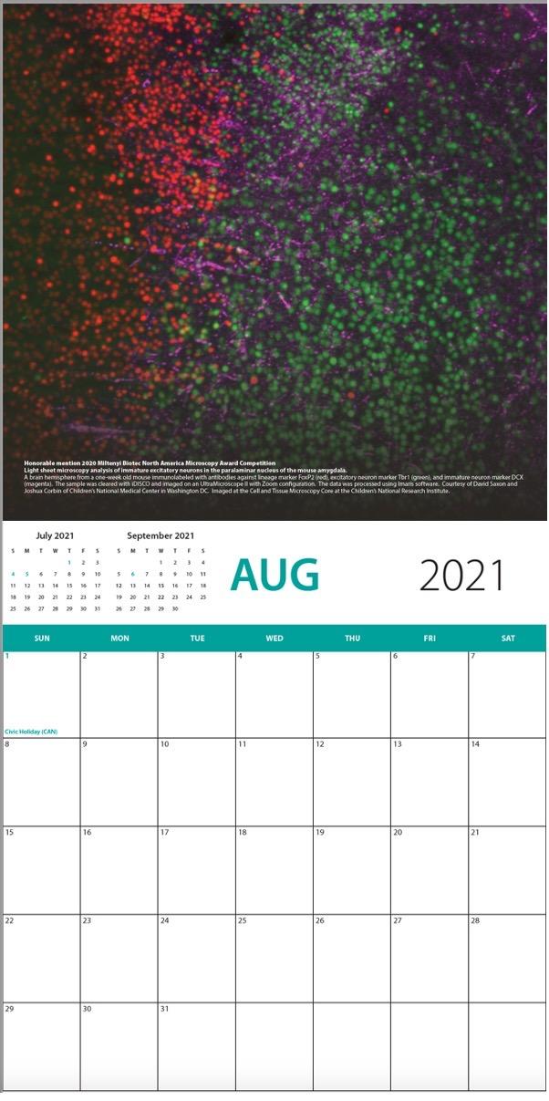 Milenty Calendar